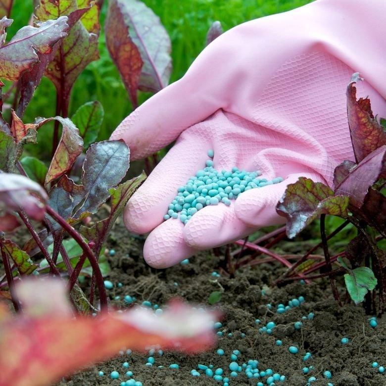 Chemiczne środki ochrony roślin